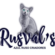 cropped-logo-rusvals-color3